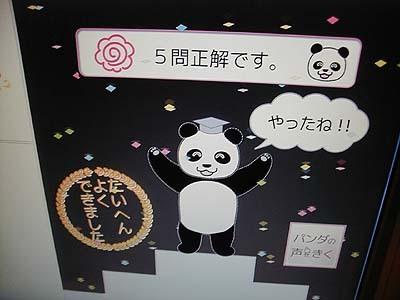 Panda3_2