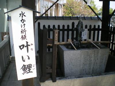 Kobe_19i