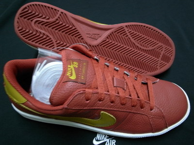 Nike_sb_cl_red