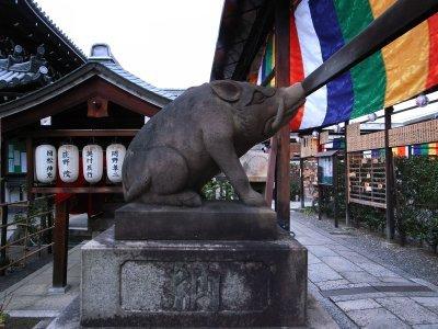 Kyoto_2010u_2