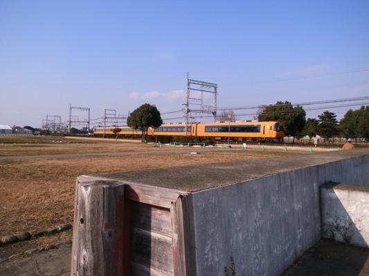 Nara_2010b