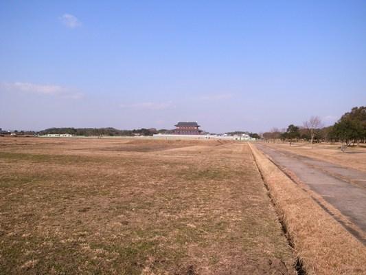 Nara_2010c