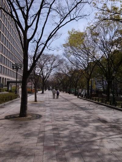 44yodoyabashi4_2