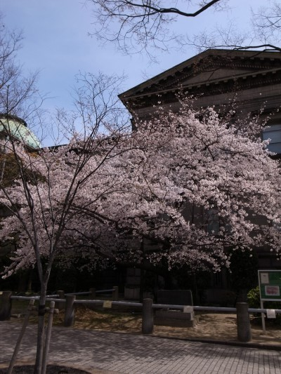 44yodoyabashi5_2