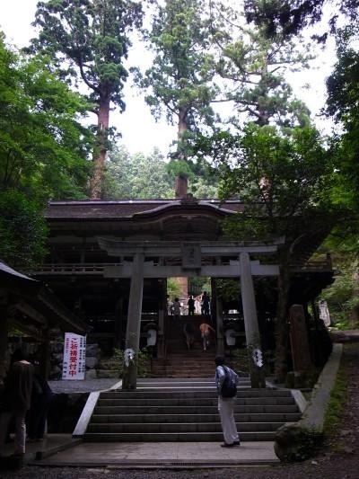 Kurama13