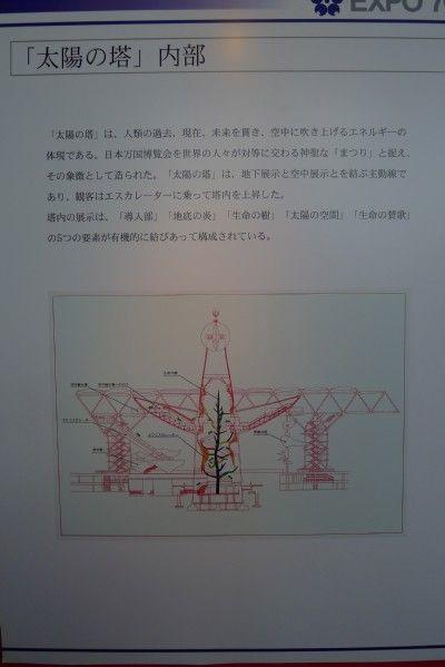 Expo119