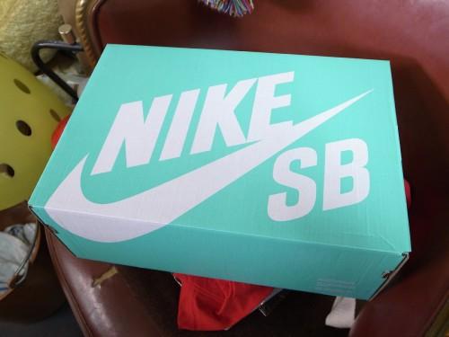 Nike_sb421a